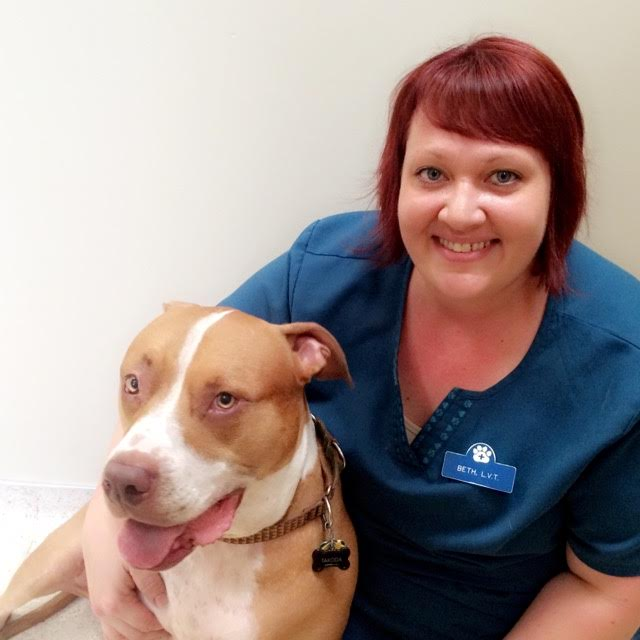 Beth Shepherd, LVT with her pitbull terrier Takoda. She is one of Grass Lake Animal Hospital's 2 licensed veterinary technicians.
